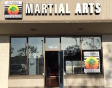 United Studios of Self Defense Huntington Beach